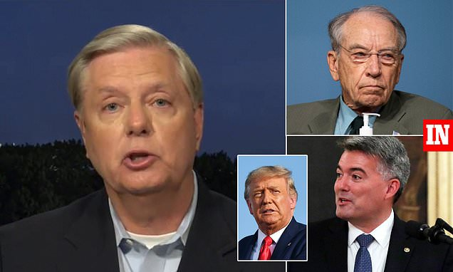 Lindsey Graham says Trump 'has the votes' to confirm his Supreme Court nominee