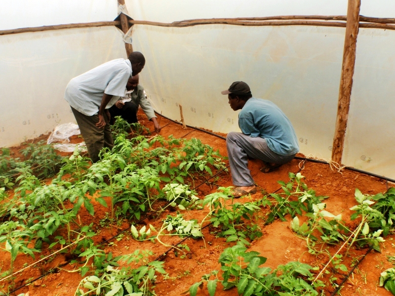 Conclusion of Kyamue Village Rainwater Catchment Project – Kenya