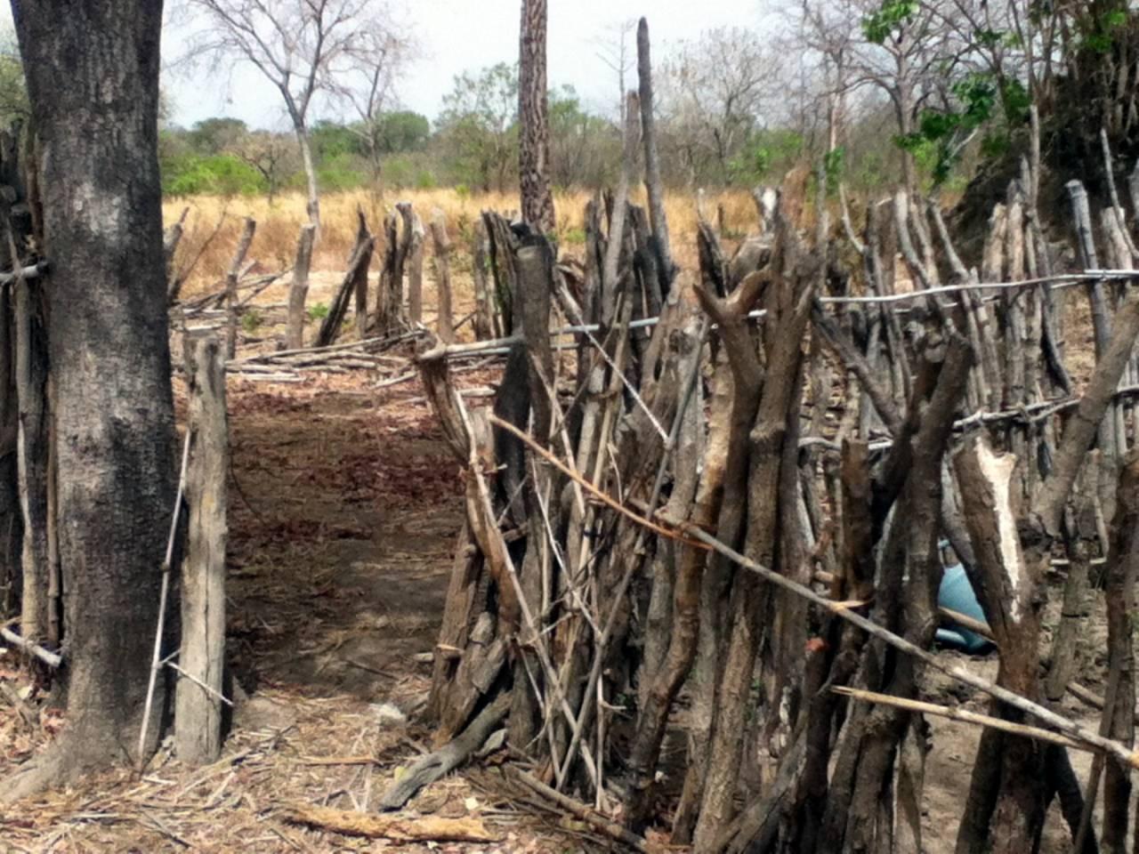 Hamdalaye Well Rehab Project - Senegal