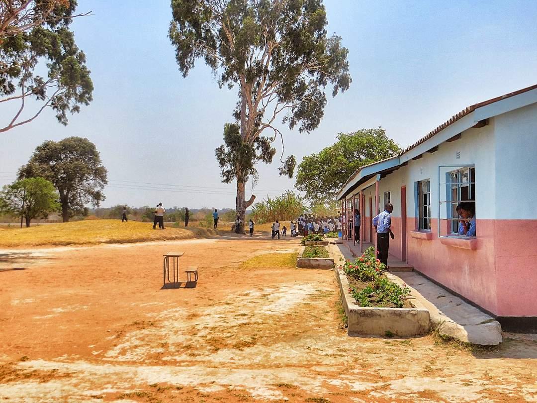 The School