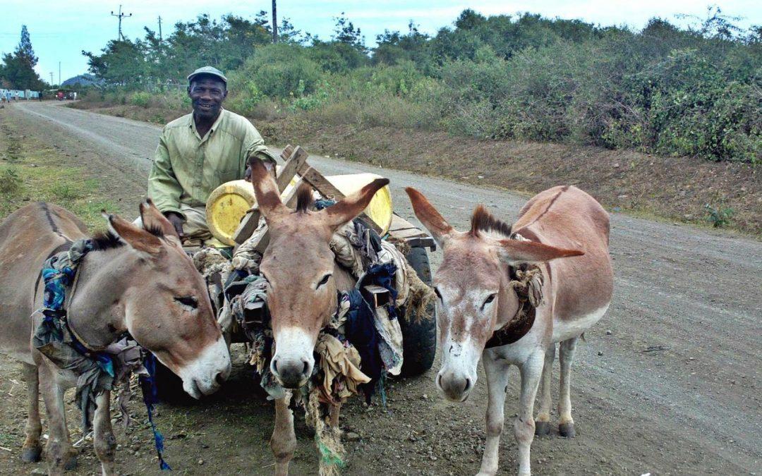 Kolo Borehole Project – Kenya