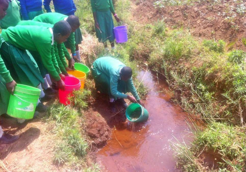 Hagati Secondary School Rainwater Catchment System Project – Tanzania