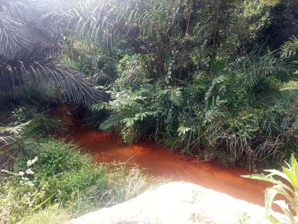 Bafamgoum Well Project - Cameroon