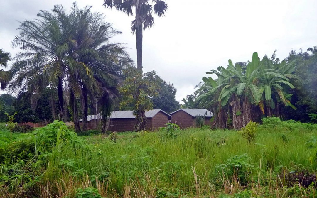 N'Tchourou Clinic Borehole System Project – Togo