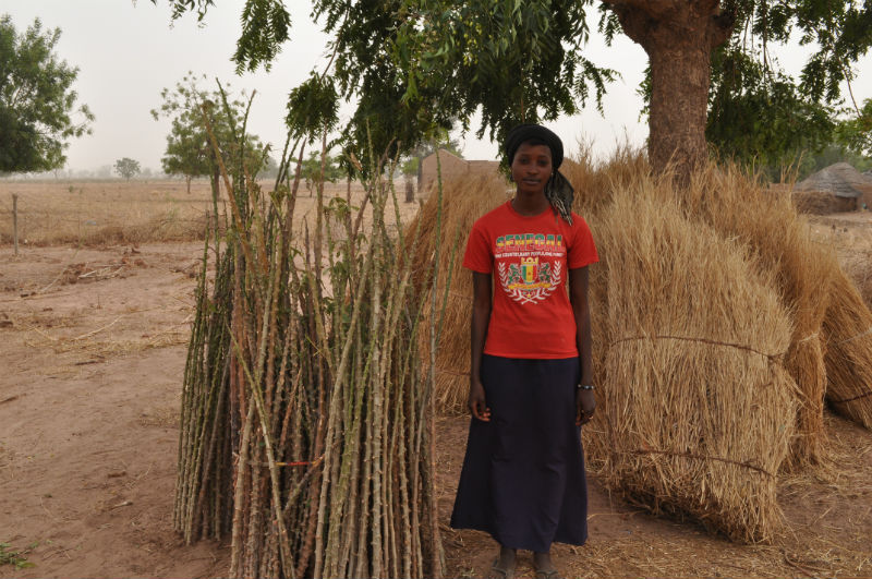 Medina Ndiobene Water Project - Senegal
