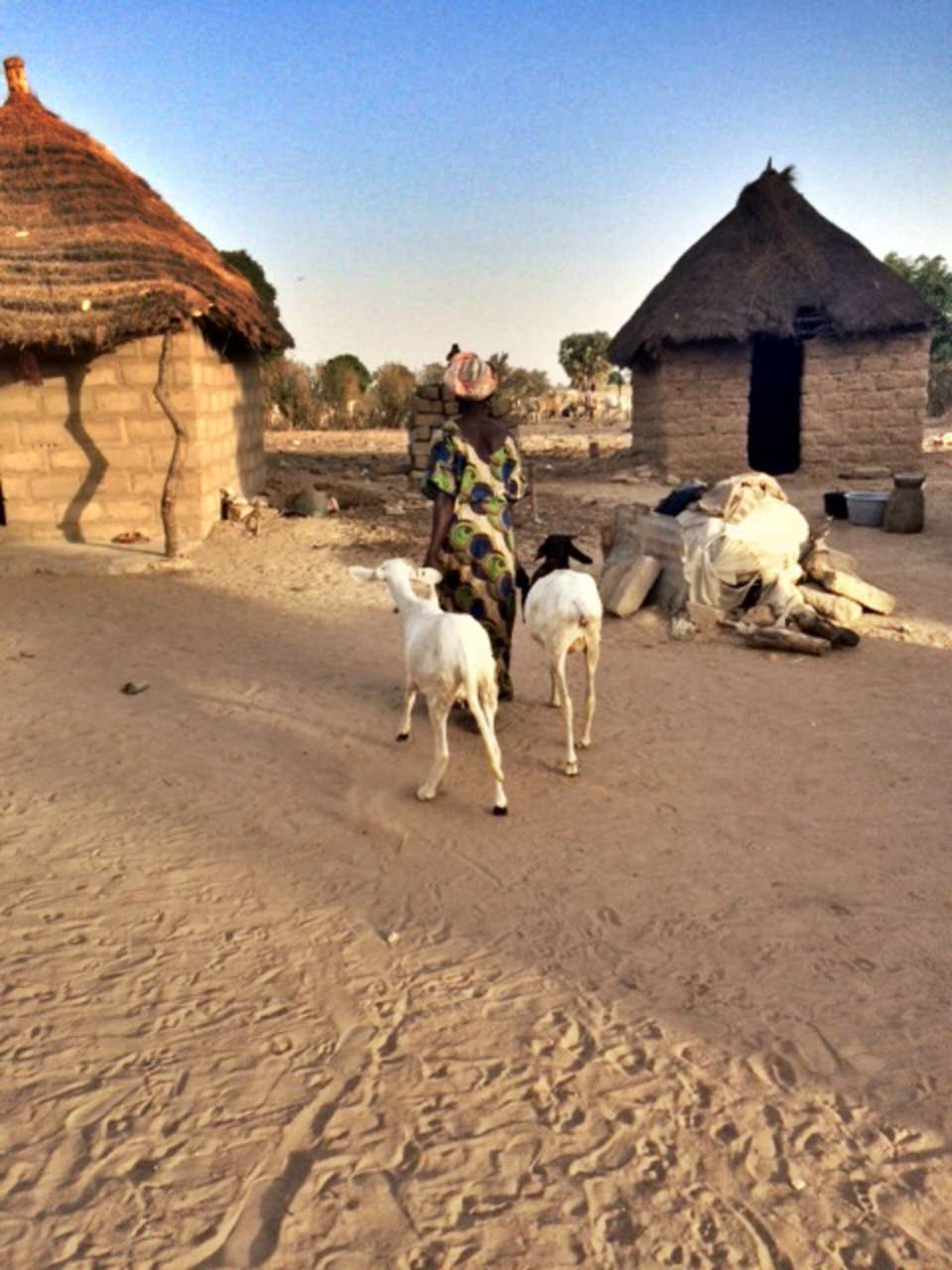Gagua Cherif Latrine Project - Senegal