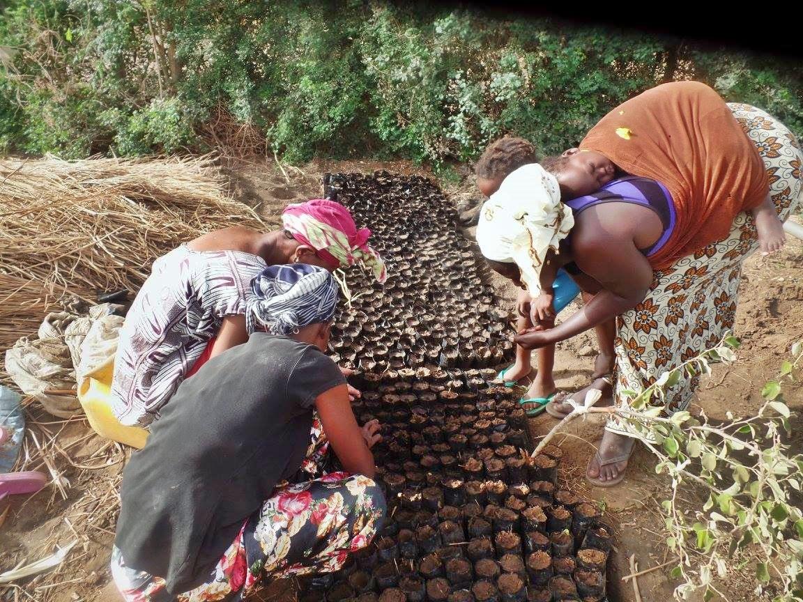 Keur Bakary Master Farm Water Project - Senegal