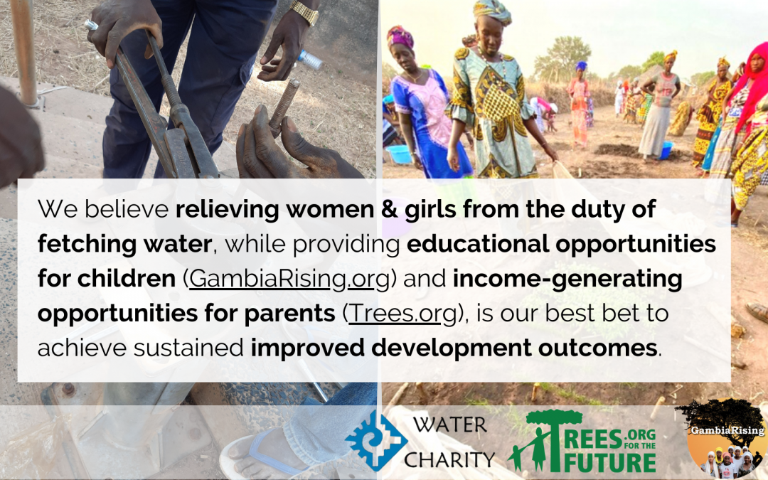 WASH FOR DEVELOPMENT VIA NONPROFIT PARTNERSHIPS – Water Charity – The Gambia