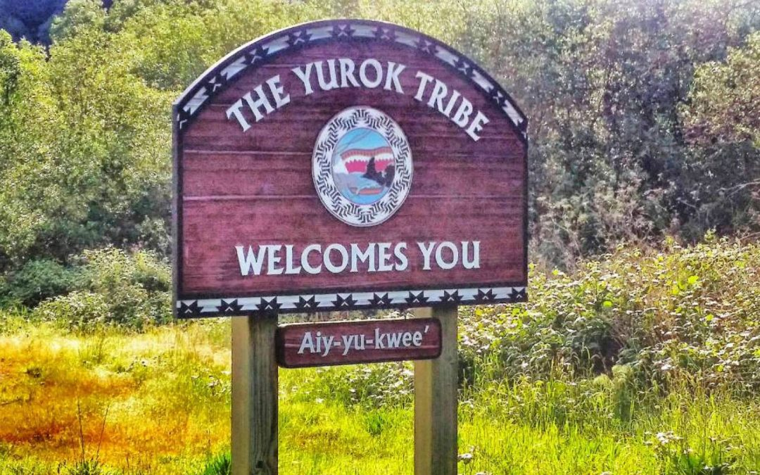 Yurok Nation Water Filter Project – Northern California