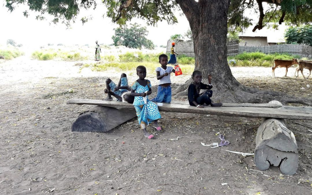 Salikenneh Village Water Project – The Gambia