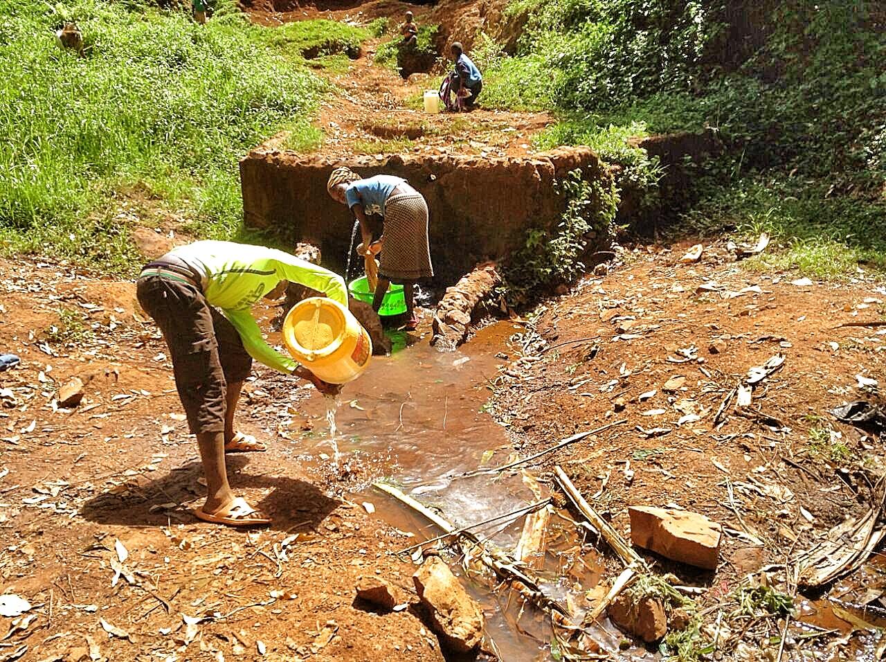Collecting Water (kusii, kenya)