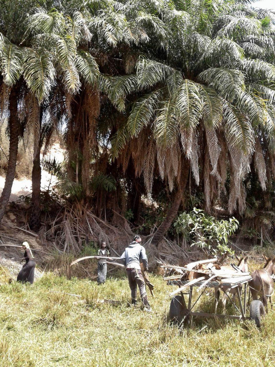 Household Latrine Project - Senegal