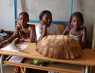 Well and School Garden Project - Senegal