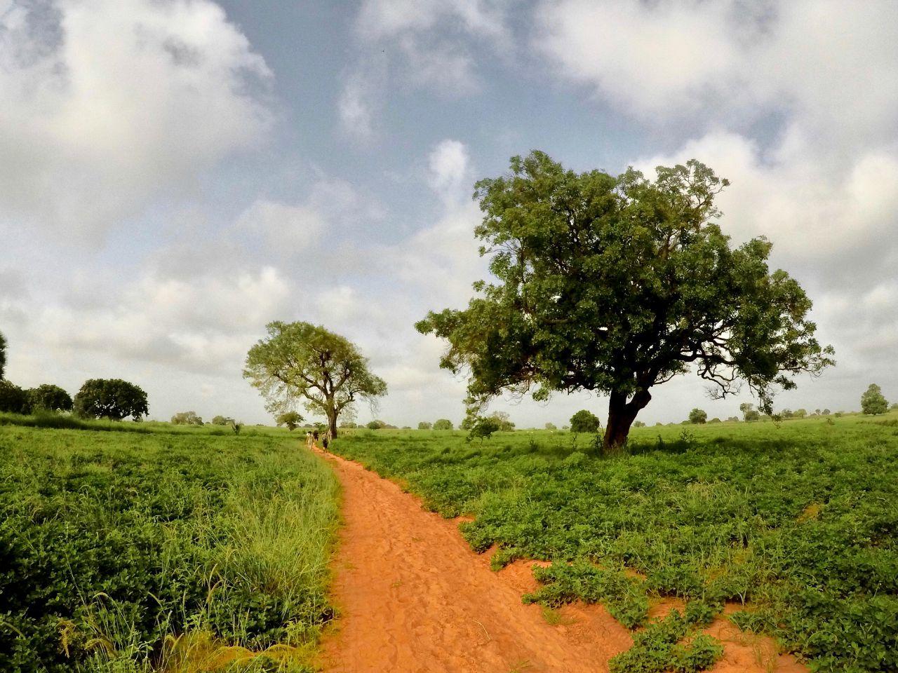 Sandicoly Latrine Project - Senegal