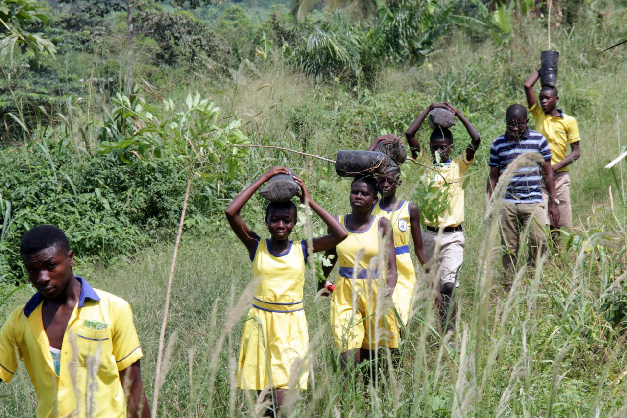 Conclusion of Call To Nature Permaculture Tree Planting Project II - Ghana