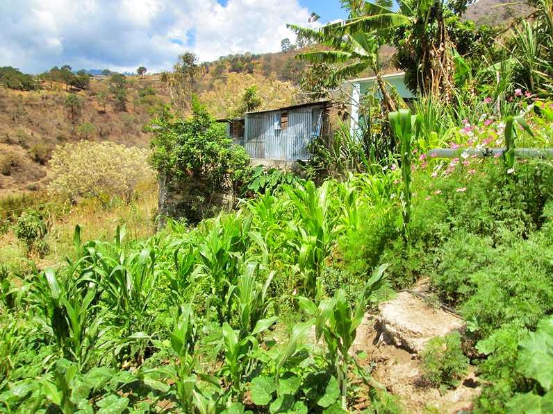 El Progresso de Chiapas